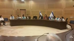 knesset with mk merav michaeli