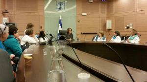 knesset with mk michal rozin