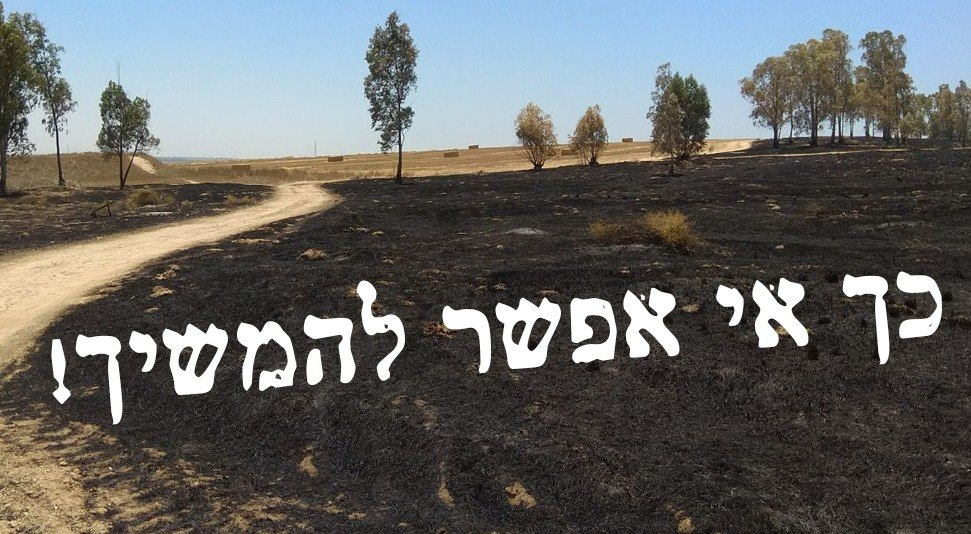 Negev burnt fields